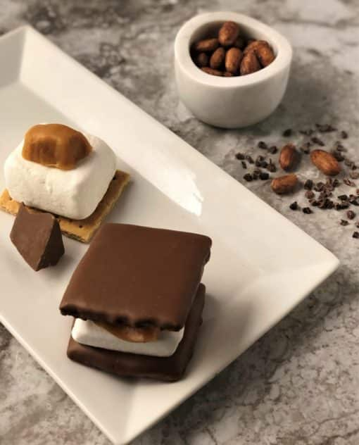 caramel smore on white plate