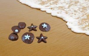 sea shell beach wedding favors