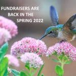 fundraisers are back in spring 2022